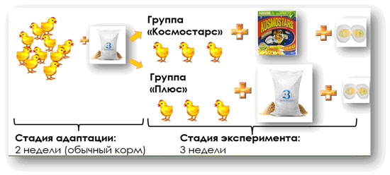 eda-pod-lupoy1